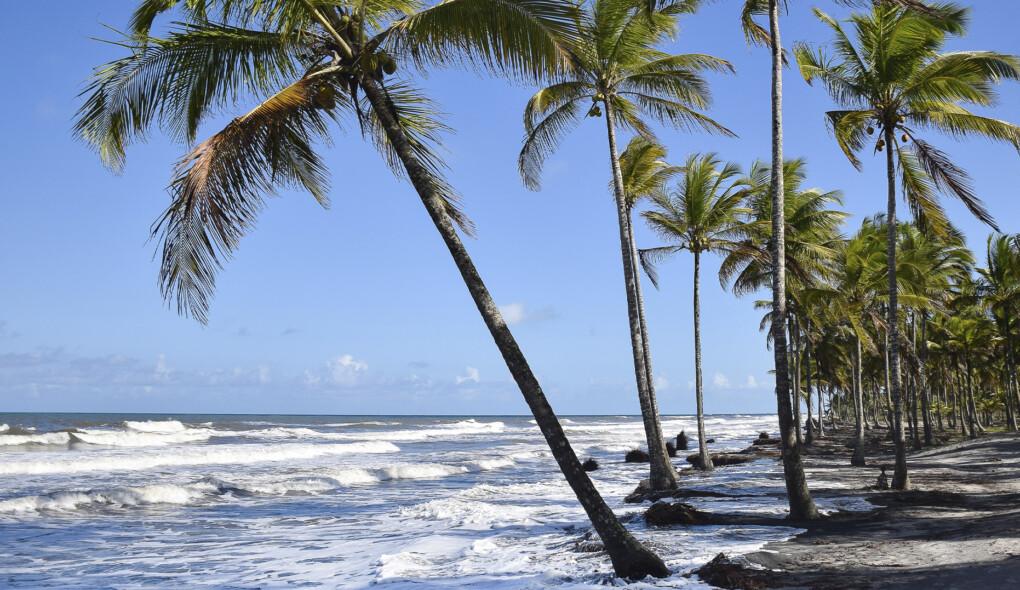 Transamerica Resort Comandatuba: uma ilha dos sonhos