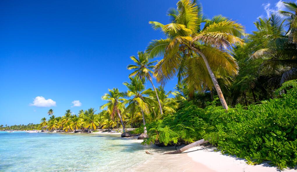 Tem que ir para o Caribe