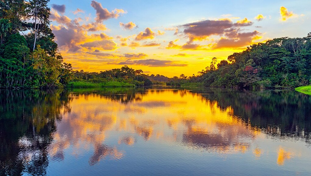 Amazônia: o patrimônio natural mais valioso do mundo