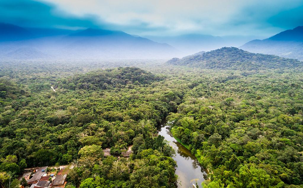 Vista aérea da floresta amazonica