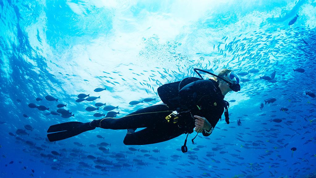 Mergulhe em Belize